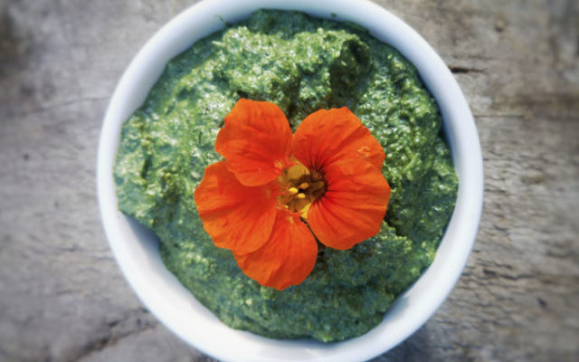 Nettle and Lime Pesto
